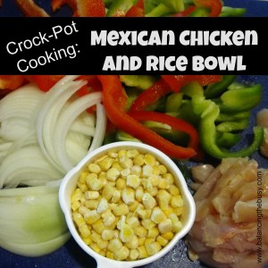 Crock pot cooking: Mexican Chicken and Rice Bowl