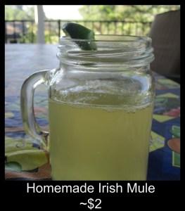 Homemade Irish Mule