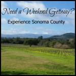 Experience Sonoma County