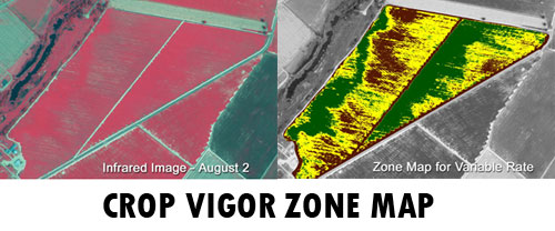 crop-vigor-zone-map