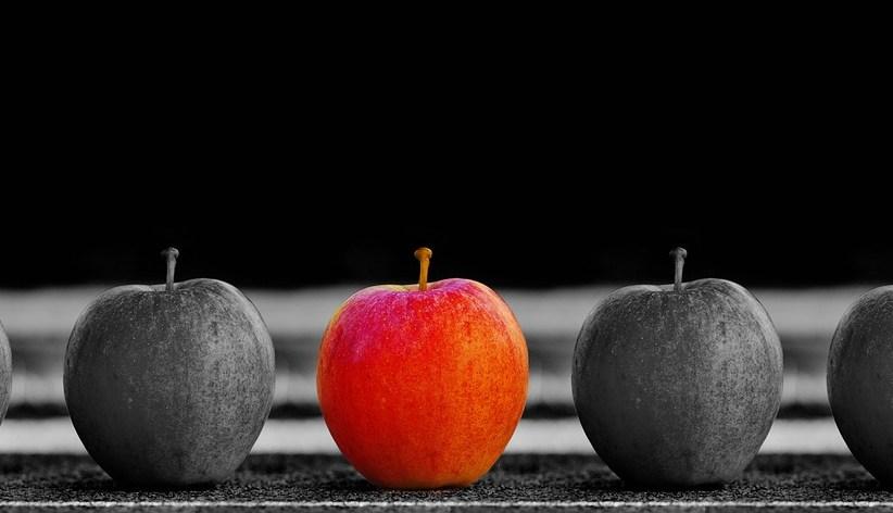 Lebenslineal – was bringt das Ihnen JETZT ?