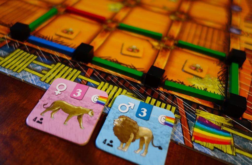 Il giocatore verde ha una coppia di leoni e decide di caricarli nell'apposito recinto da 3 caselle, dopo avervi stivato un token cibo in ognuna di esse.