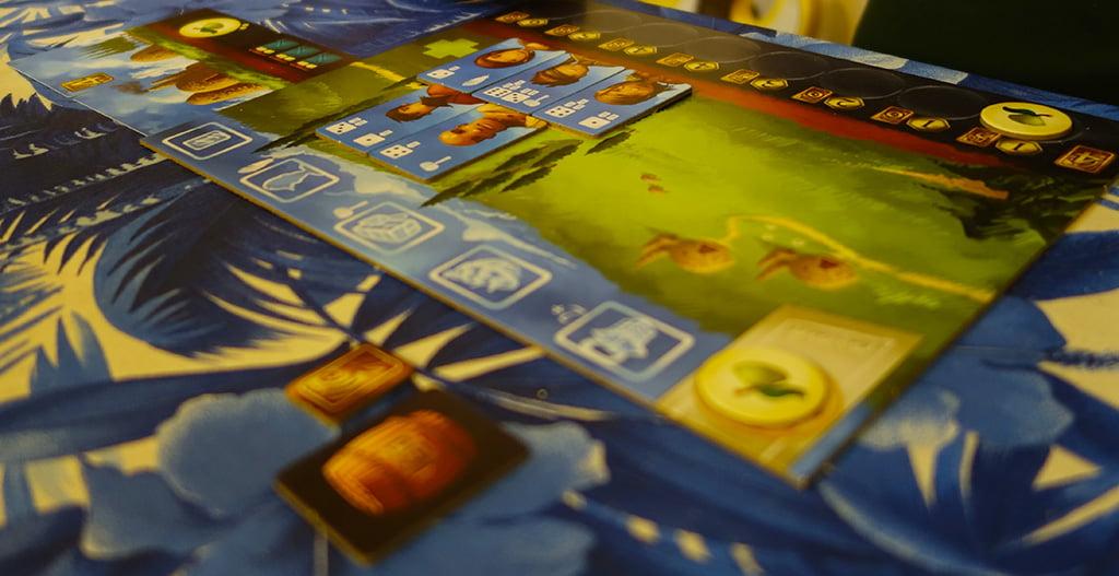 In questo caso, il giocatore ha sfruttato tutti e 5 i suoi abitanti, ma (come vedete in alto a sinistra) ha soltanto 3 posti letto a disposizione, quindi 2 personaggi non potranno essere usati nel turno successivo.
