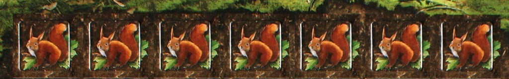 Gli scoiattoli