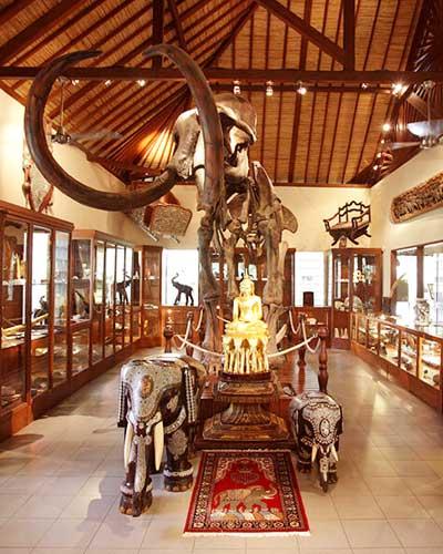 balade-elephant-14