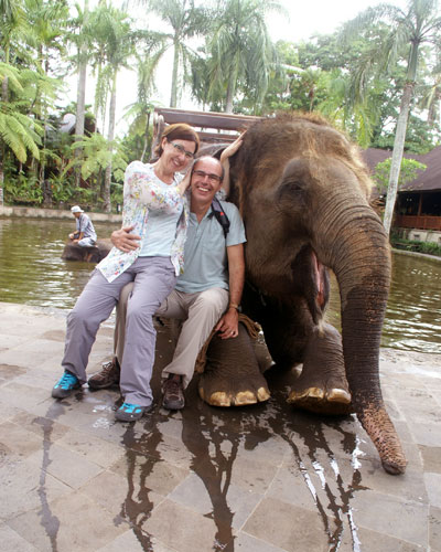 elephant-bali