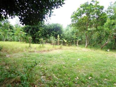 Land in jimbaran bali - LJI021