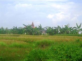 Land for sale in canggu Bali - LCG081