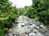 Land for sale in Tabanan Bali LTB015