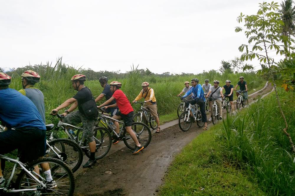 Bali Bongkasa Cycling Tours - Gallery 02150217