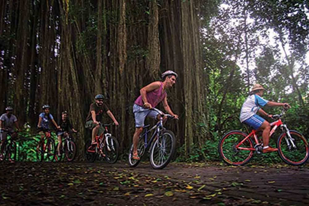 Bali Bongkasa Cycling Tours - Gallery 06150217