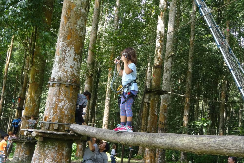 Bali Treetop Bedugul Adventure Tour - Gallery 04050317