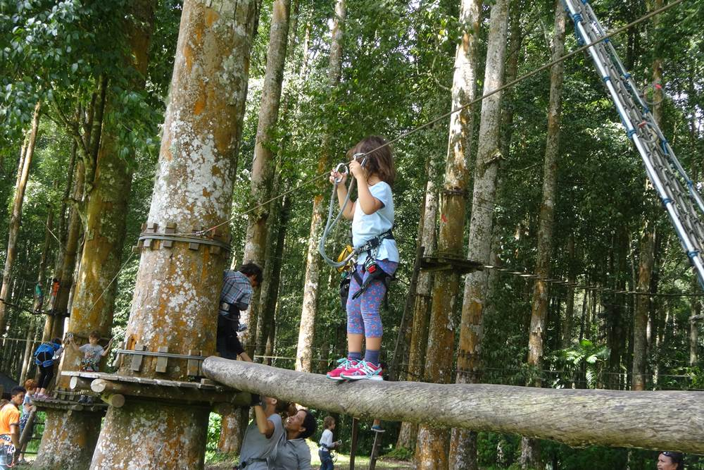 Bali Treetop Bedugul Adventure Tour - Gallery 04050317