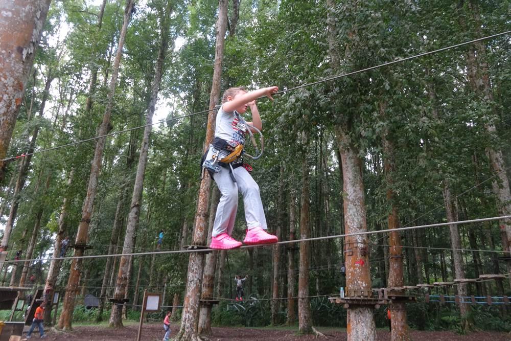 Bali Treetop Bedugul Adventure Tour