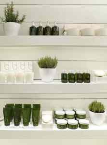 Spa Organic Products to Help Spa Marketing align with customer demands