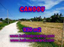 Land for sale in Bali, spectacular view in Canggu Bali – TJCG146