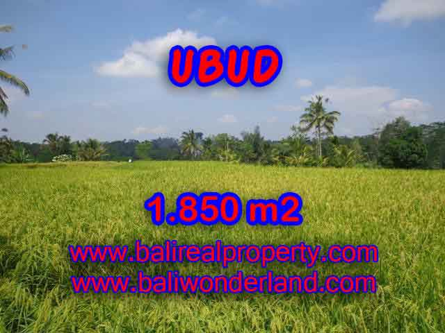 Land in Bali for sale, fantastic view in Ubud Bali – TJUB410