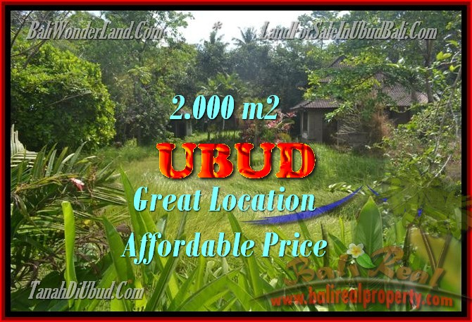 Property in Bali for sale, Astonishing land for sale in Ubud Bali – TJUB429
