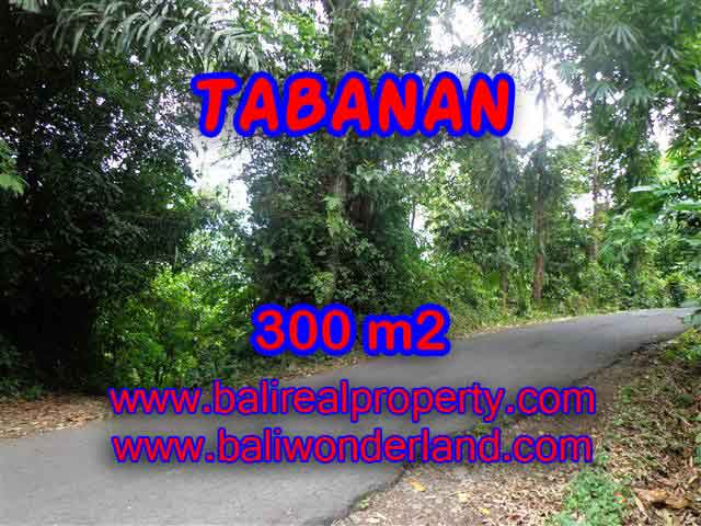 Excellent Property for sale in Bali, land for sale in Tabanan Bali  – TJTB116