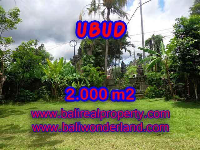 Beautiful Property for sale in Bali, land for sale in Ubud  – TJUB367