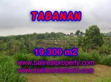 Land for sale in Bali, exceptional view in Bedugul Tabanan – TJTB086
