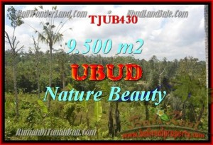 Exotic PROPERTY 9,500 m2 LAND FOR SALE IN UBUD BALI TJUB430