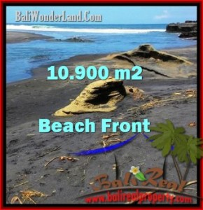 FOR SALE Magnificent 10,900 m2 LAND IN TABANAN TJTB199