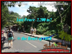 FOR SALE Exotic 2,200 m2 LAND IN UBUD TJUB509