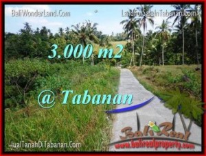 Exotic PROPERTY TABANAN BALI 3,000 m2 LAND FOR SALE TJTB205