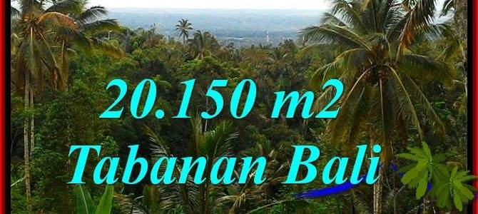 Beautiful 20,150 m2 LAND FOR SALE IN TABANAN TJTB322