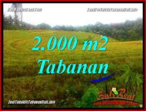 Magnificent TABANAN BALI 2,000 m2 LAND FOR SALE TJTB356