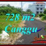 LAND FOR SALE IN CANGGU TJCG222
