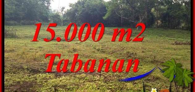 FOR SALE 15,000 m2 LAND IN TABANAN BALI TJTB381