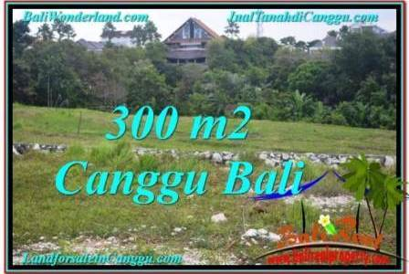 300 m2 LAND SALE IN CANGGU TJCG205
