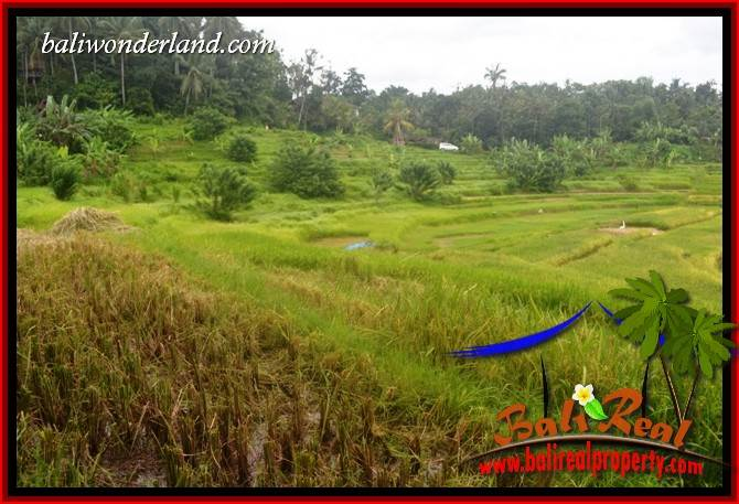 Tabanan Bali 2,000 m2 Land for sale TJTB396