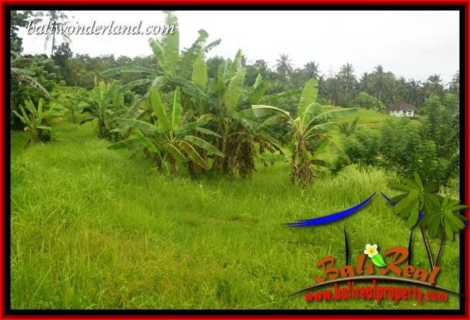 Magnificent Tabanan Land for sale TJTB397