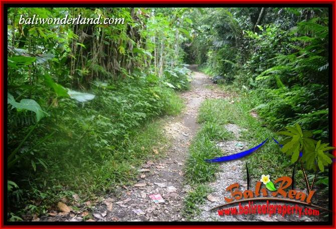 3,600 m2 Land in Tabanan Bali for sale TJTB415