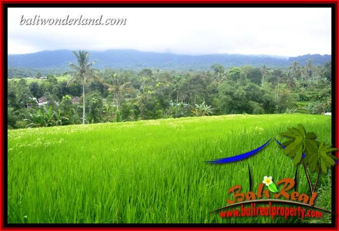 Exotic Property Tabanan Penebel 6,500 m2 Land for sale TJTB416