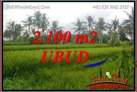 Beautiful Property Land in Ubud Bali for sale TJUB710