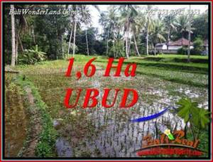 Exotic Property 16,000 m2 Land in Ubud Tegalalang for sale TJUB735