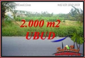 Magnificent Property Land sale in Ubud TJUB737