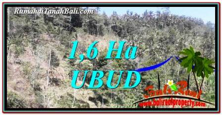 FOR SALE Exotic PROPERTY LAND IN UBUD TJUB748