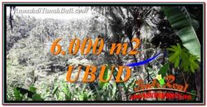 Affordable PROPERTY LAND FOR SALE IN UBUD BALI TJUB750
