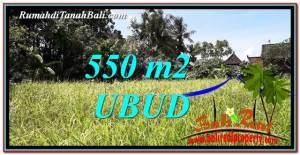 Magnificent PROPERTY 550 m2 LAND FOR SALE IN Sentral Ubud BALI TJUB766