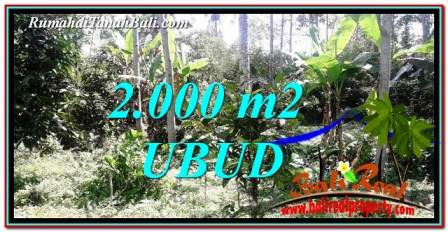 Affordable UBUD BALI 2,000 m2 LAND FOR SALE TJUB747