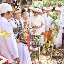 Warga Banjar Saba Penatih  Melaspas, Dipuput Tiga Sulinggih