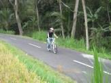 sodexo, indonesia, sodexo indonesia, bali, incentive, tours, bali incentive, incentive tours, bali incentive tours, ubud, bali cycling, ubud bali