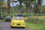 Balinese, VW Village Safari, Volkswagen, Syngenta Group
