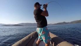 Bodrum spj antenli avı
