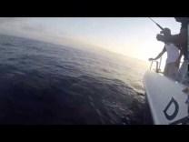 Slow jigging ile Yasemin balığı avı
